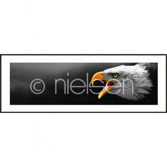 "Gerahmte Kunst ""Eagle"" mit Alurahmen C2"