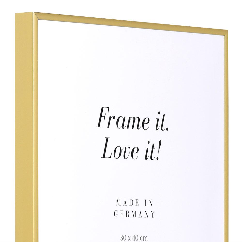 alurahmen quadro 59 4x84 1 a1 gold matt true color super clear entspiegelt. Black Bedroom Furniture Sets. Home Design Ideas